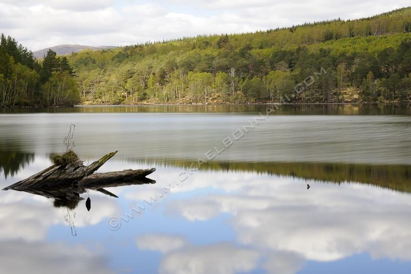Parc Cairngorms Ecosse - Loch An Eilein