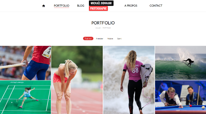 Nouveau portfolio - Mickaël Bonnami Photographe - Sport - Nature - Animalier