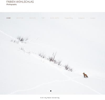 Fabien wohlschlag - Site web
