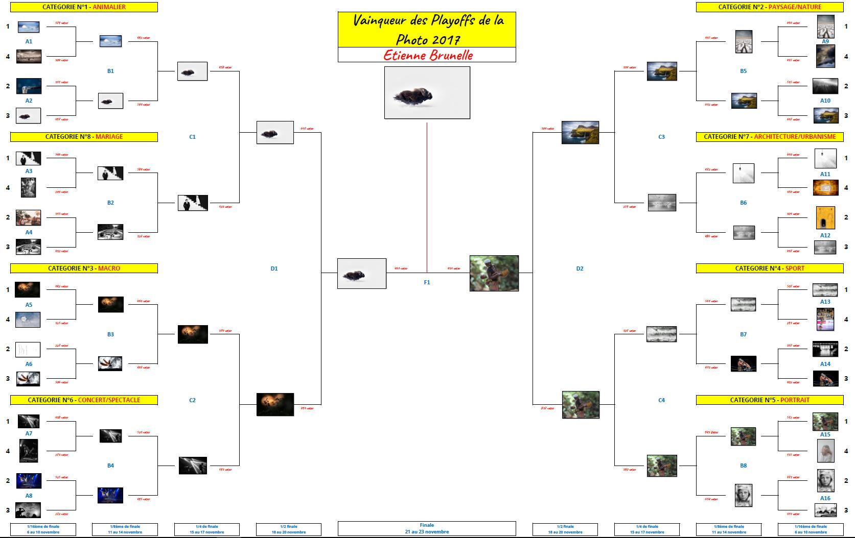 Finale des Playoffs de la Photo 2017 - Vainqueur - Etienne Brunelle