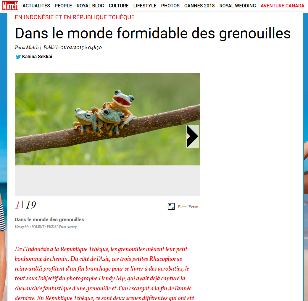 Journal Paris-Match - Cruauté Animale