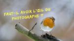 Faut-il avoir l'œil du photographe ? Mickaël Bonnami Photographe