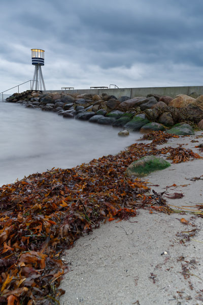 Au bord de la Mer Baltique - Danemark - Taarbaek