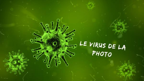 Le virus de la photo - Mickaël Bonnami Photographe