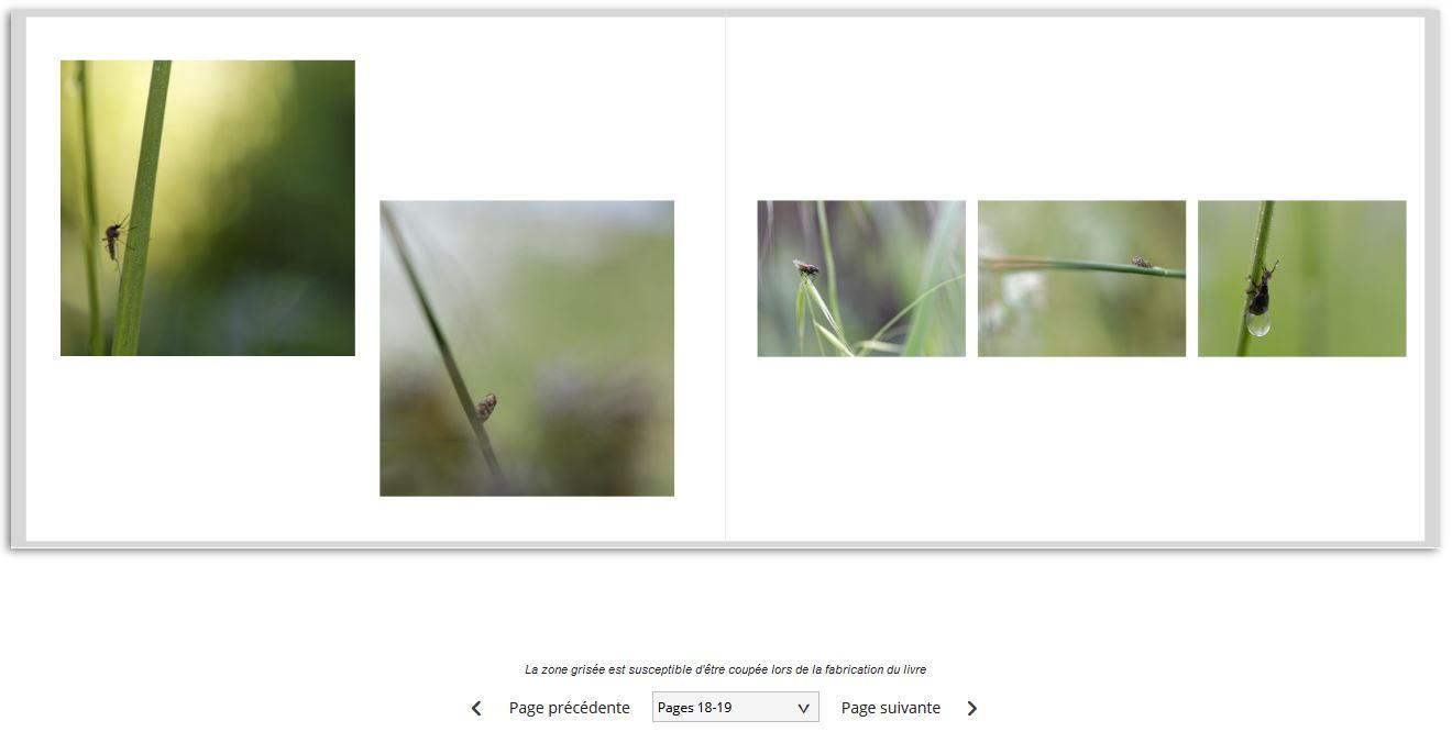Mise en page du livre photo Photoweb